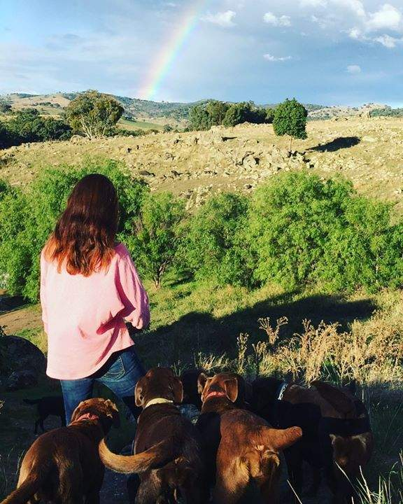 #walkingdogs #rainbowsandsunshine
