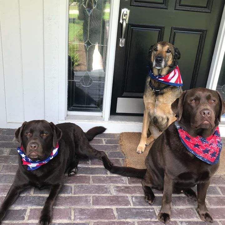 Happy 4th of July from the USA!!  Reno and Wright celebrating America's independence with their pal Ziah!!